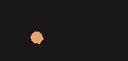 Logo NUMiD